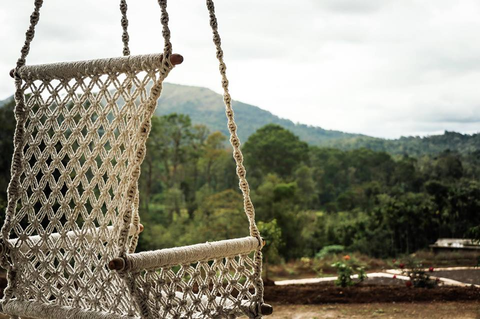 swing in the arms of nature